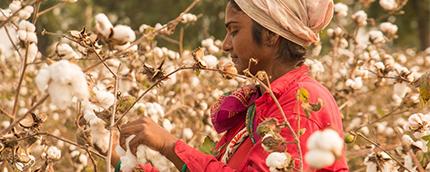 自社製品が労働搾取に繋がっていないか? フェリシモ流SDGs時代の商品開発