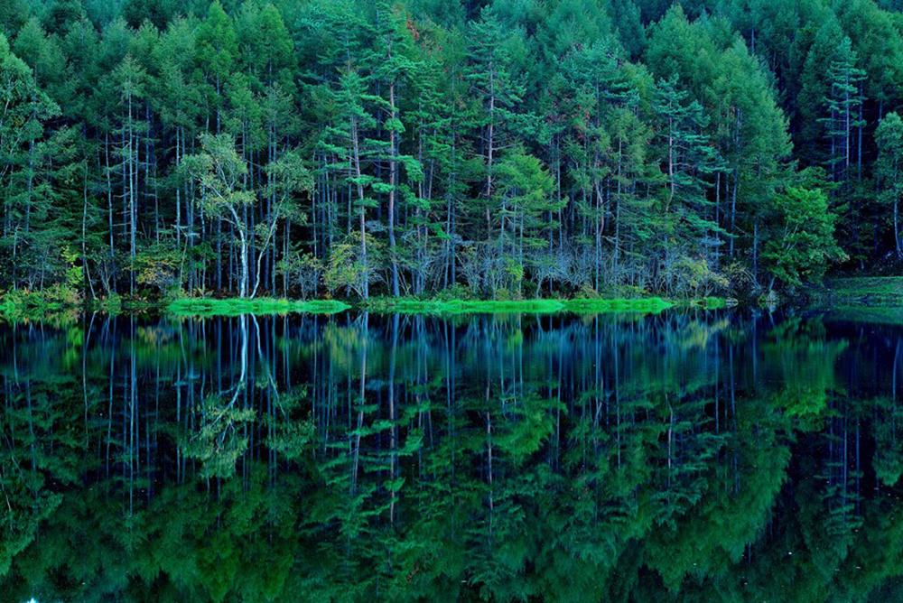 御射鹿池(みしゃかいけ)は東山魁夷の「緑響く」のモチーフ
